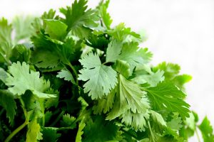 coriander for thyroid