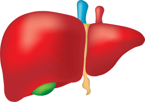 Essential Oils for Fatty Liver pic