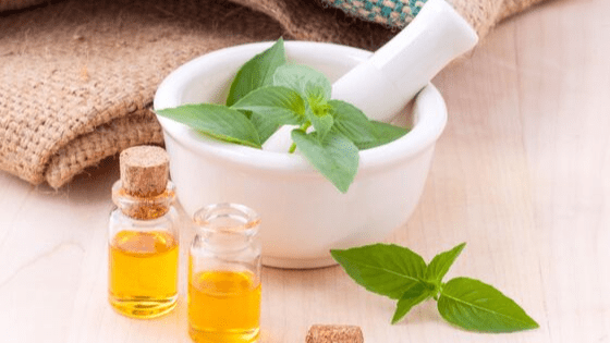 basil oil for adrenal fatigue