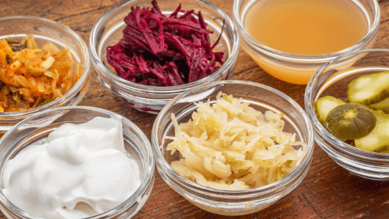fermented food for digestion