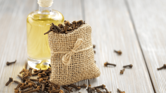 clove oil for hair loss