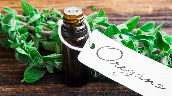 oregano oil for ringworm