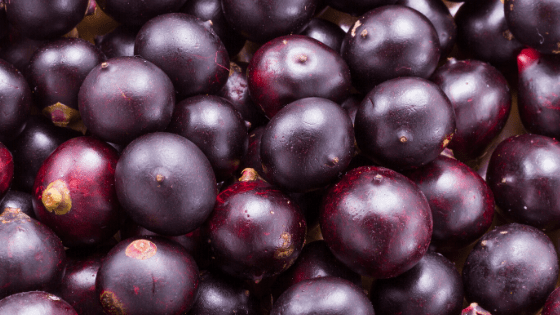 acai oil benefits and uses