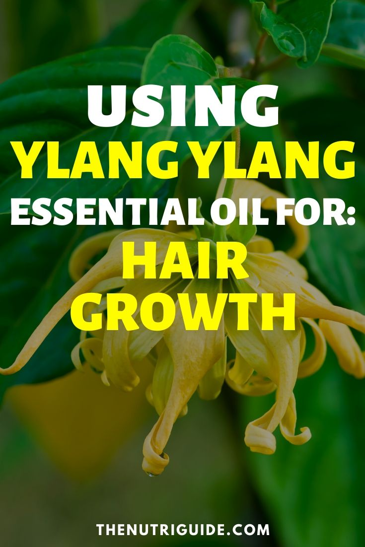 ylang ylang for hair growth