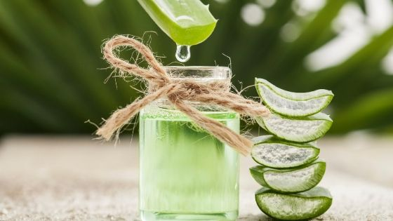 aloe juice for hair